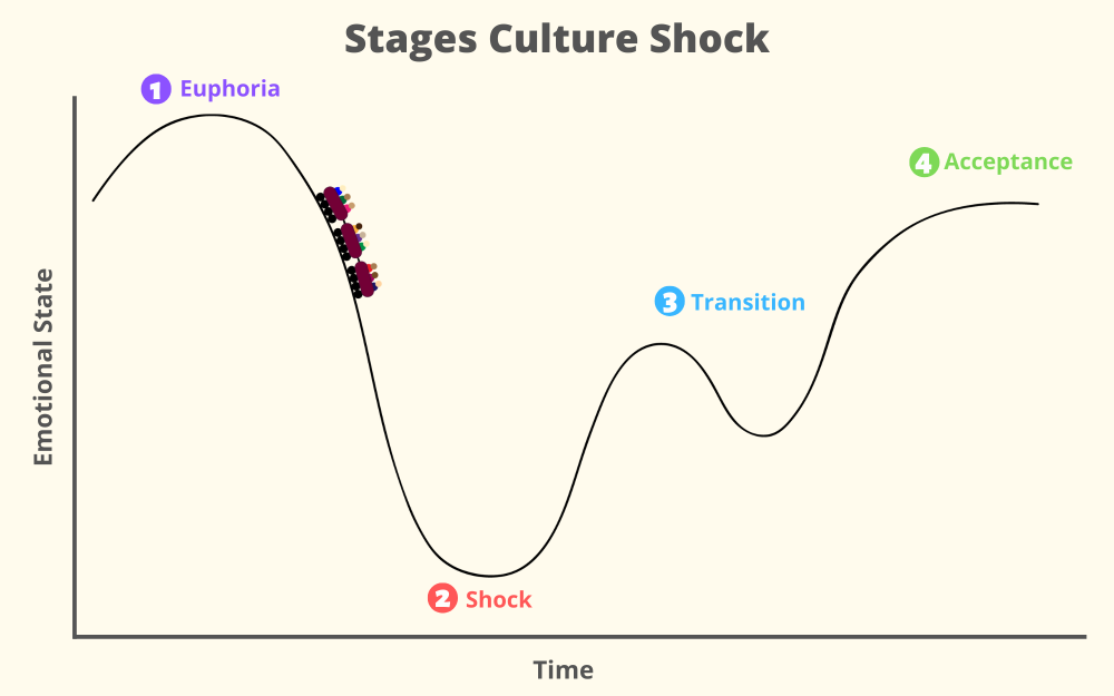 Culture Shock Graphic